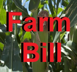 farm bill field hearing