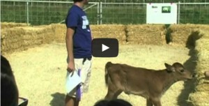 10-15-14-Tulare-FFA-Farm-Tours