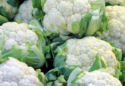 how to grow cauliflower nz