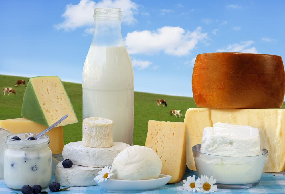 dairy products in glass containers and Cheese
