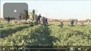 AFBF-Video-Ag-Labor-and-Border Security
