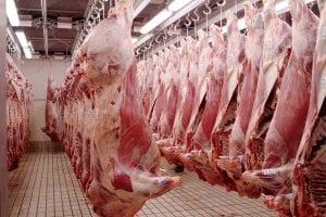 china beef exports