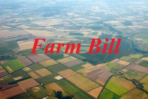farm bill peterson