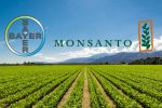 bayer shareholders billions monsanto