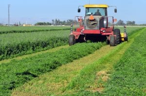 Forage Industry