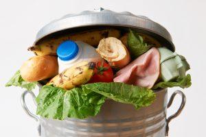 Food Waste Initiative