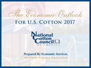 national cotton council economic outlook