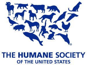 Humane Society of the U S  Rating is Downgraded Again