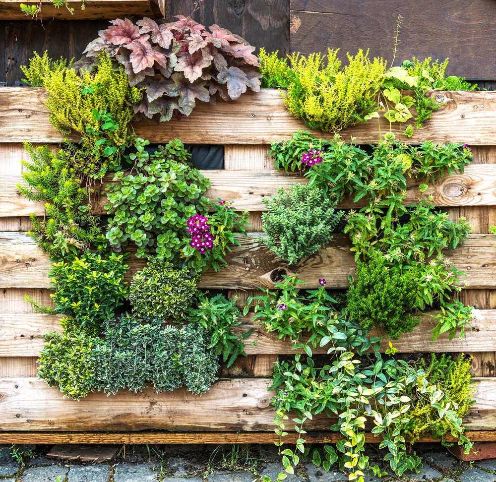Vertical Herb Garden Ideas: Unique Ways To Showcase Your Herb Garden