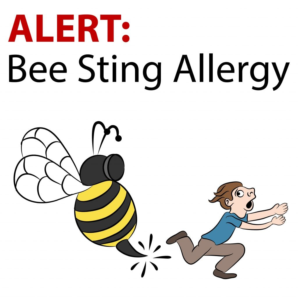 Some Home Remedies for Bee Stings | AgNet West